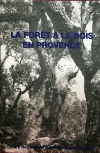 forêt bois Provence