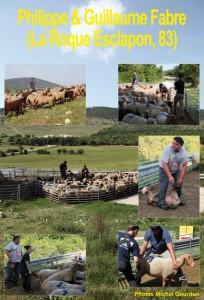 berger exposition pastoralisme élevage brebis transhumance crdo